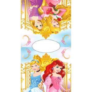 Πόντσο Θαλάσσης Princess Disney (Κωδ.200.506.082)