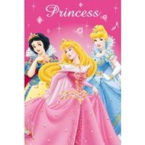 Κουβέρτα Princess Disney (Διαστάσεις 1.00cm x 1.50cm) (Κωδ.387.01.019)
