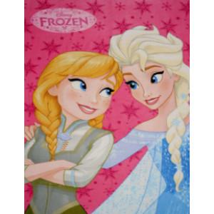Κουβέρτα Φλις Frozen Disney (Διαστάσεις 1.00x1.40cm) (Κωδ.200.01.063)
